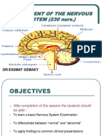 Assessment of the Nervous System