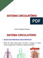 Sistema C..pdf
