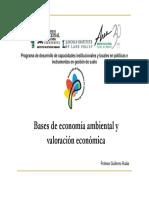 Bases Economia Ambiental 4-Rudas Guillermo-2010-Presentacion