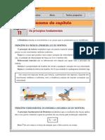 rv1_11.pdf