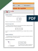 rv1_15.pdf