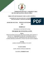 Tipos de Estructuras de Organizaciones PMBOK