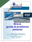 Guida Per Affrontare Il Problema Amianto