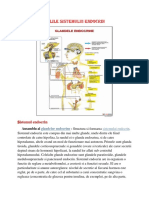 Bolile sistemului endocrin