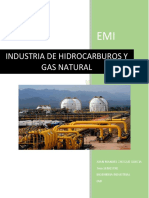 GAS NATURAL.docx