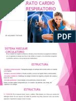 APARATO CARDIO VASCUAR - RESPIRATORIO.pptx