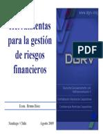 DGRV - Herramientas para la gesti¢n de riesgos - Bruno Bez AGO2009 V18.pdf