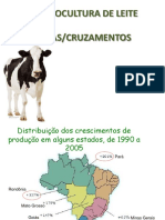 Raças e cruzamentos de bovinos de leite