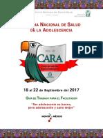 Guia SNSA 2017-Final