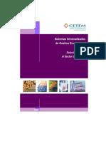 Sistemas Informatizados Gestion Empresarial Cetem