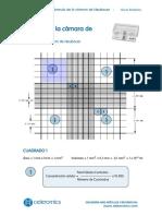 Formula-Camara-Neubauer-Concentracion.pdf