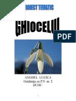 ghiocelul PROIECT TEMATIC