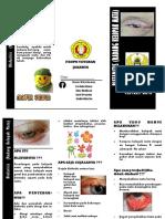Leaflet blefaritis