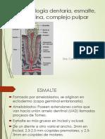 Histología dentaria, esmalte, dentina, complejo pulpar, Dra. Bejarano (3).pptx