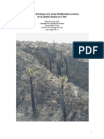 La Acción Del Fuego en La Zona Mediterránea Costera de La Quinta Región de Chile