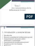 Tema 1. Introducción y Características de La Delincuencia Juvenil