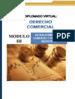 3 Establecimiento de Comercio y Propiedad Industrial