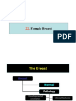 Breast 2 Neoplastic