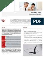 SAP_Audit_y_Seg