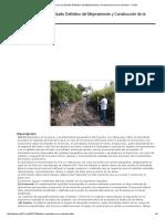 Trazo y Replanteo en carretera.pdf