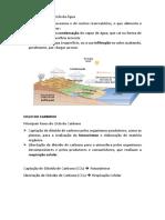 Resumo CN 5º Teste.docx
