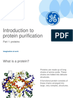 Introductiontoproteinpurificationproteins26jun2015 150917210050 Lva1 App6891