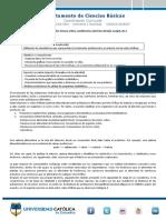 Laboratorio Redes Tróficas (1)