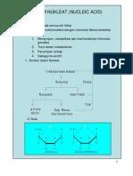 5 Slide Asam Nukleat Atau Nucleic Acid