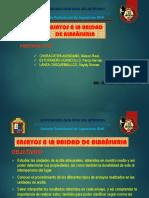Ensayos a La Unidad de Albañileria