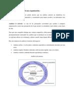 Análisis Del Entorno de Una Organización