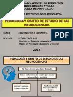 Pedagogía y Objeto de Estudio de Las Neurociencias