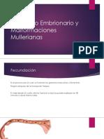 Desarrollo Embrionario y Malformaciones Mullerianas [Autoguardado]