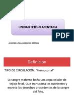 Unidad Fetoplacentaria