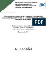 Apresentação Dissertação Certa PDF