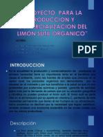 Proyecto Para La Produccion y