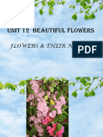 flower Unit 12.pptx