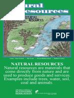 2008_natural_resources_va.pdf