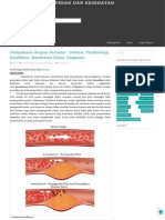 Dislipidemia (Bagian Pertama)