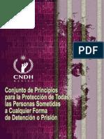 Conjunto de Principios Para La Protección de Todas Las Personas Sometidas a Cualquier Forma de Detención o Prisión