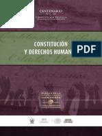 Constitución y Derechos Humanos-DDHH