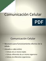 4. Comunicación Celular