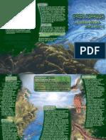 Turitea Stream Project Brochure - Green Corridors