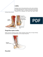 Anatomi Tendon Achilles.docx