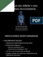 Patologia Renal y Vias Urinaria en Ecografia