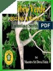 el-libro-verde-botanica-magica.pdf