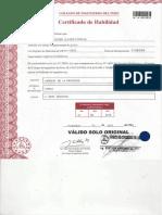 HABILITACIÓN DEL CIP.pdf