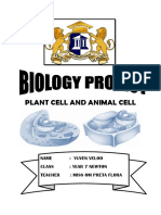 Plant Cell and Animal Cell.docx Yuven
