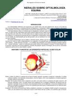 29-Aspectos Oftalmologia Equina