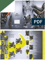 brochuer-hornet_2.pdf