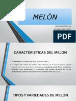 Melon Arreglado